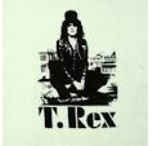 t rex t shirts band tshirts online teerex nz. Black Bedroom Furniture Sets. Home Design Ideas